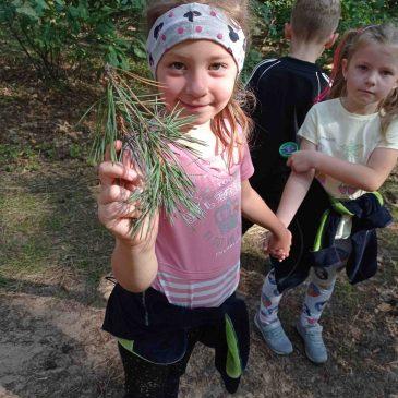 O zdrowie dbamy, dlatego las odwiedzamy!